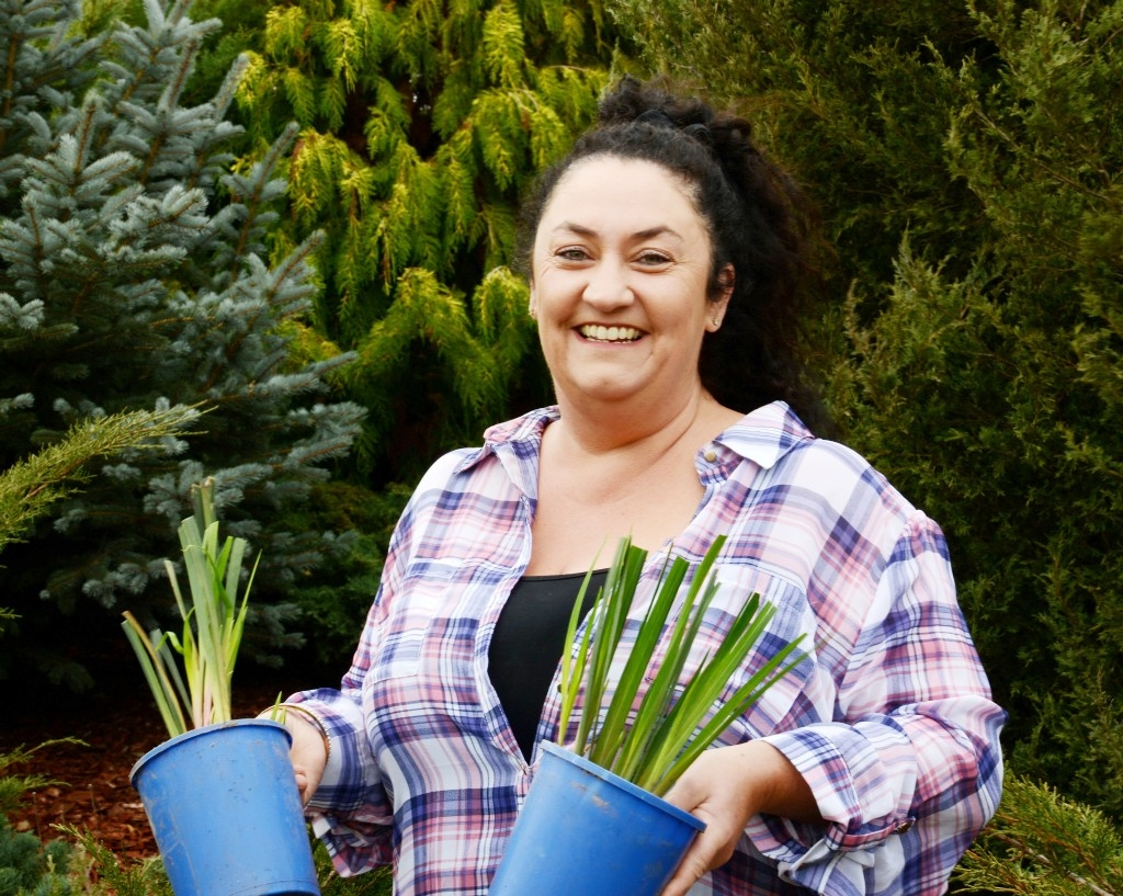 Meet: Sharon Drinkwater, Iris grower, Rainbow Ridge